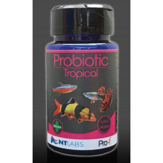 Pro-f Probiotic Tropical 45g