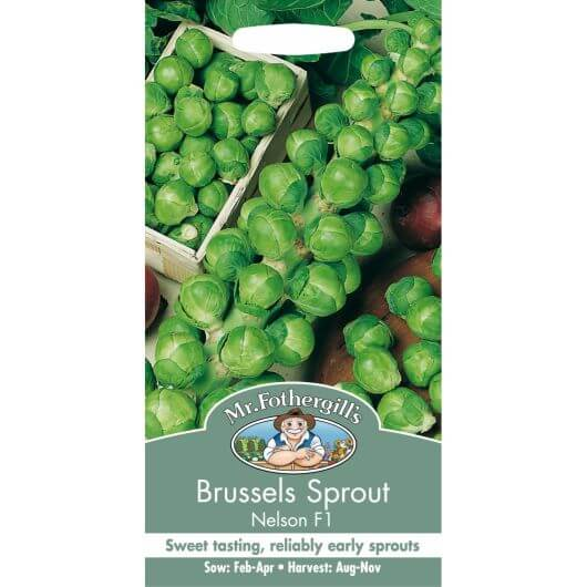 Brussels Sprout Nelson F1 MF Veg Seeds