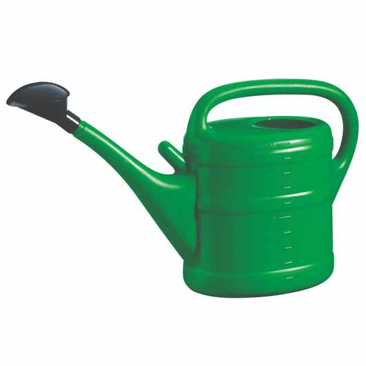 Essential Watering Can 10L Green