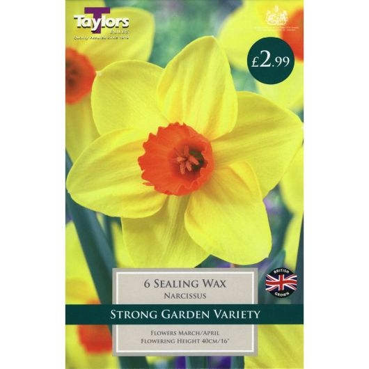 Taylors Narcissi Sealing Wax